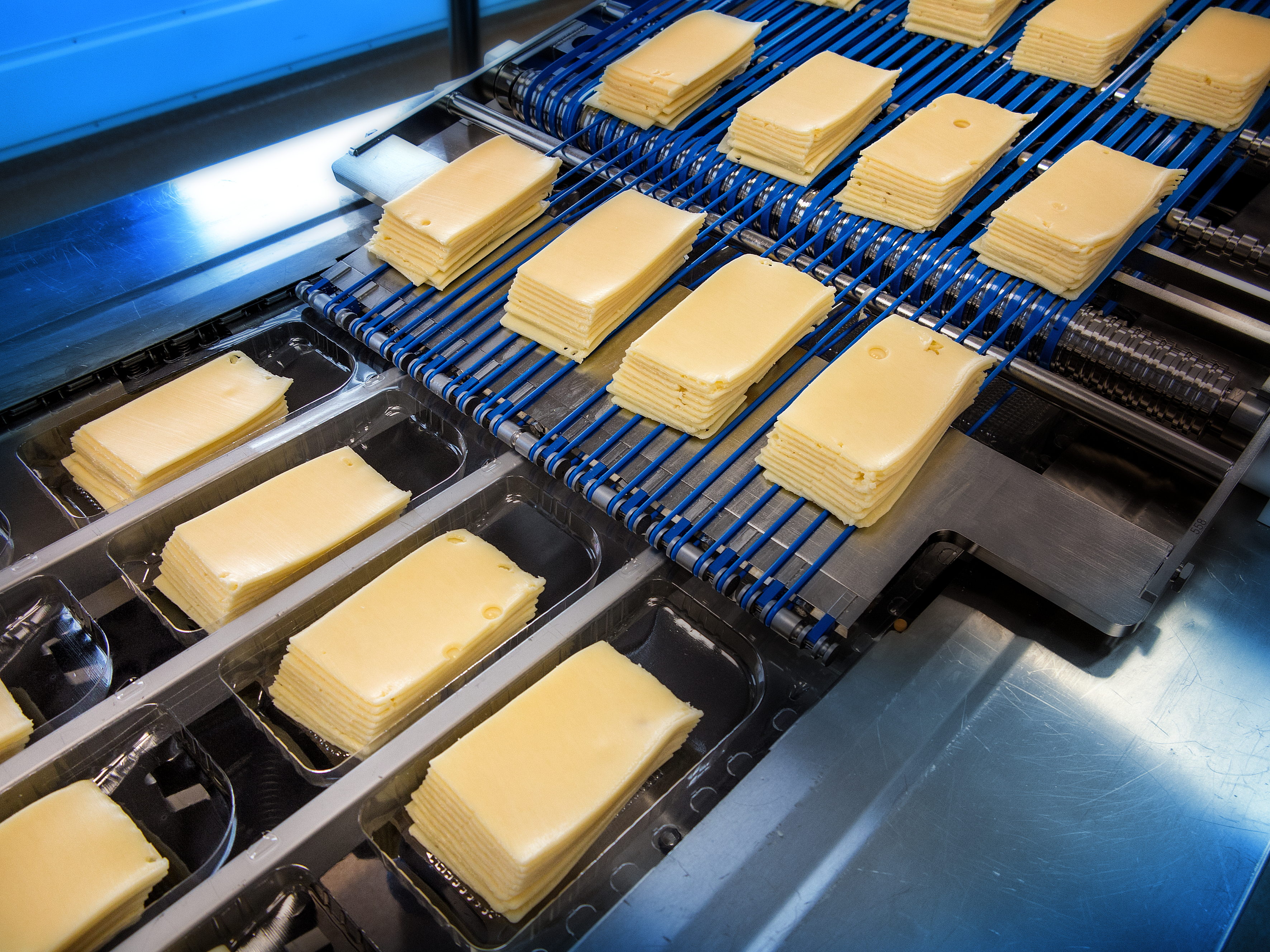Sliced cheese line at Arla Foods