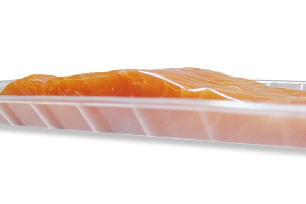 Close up salmon
