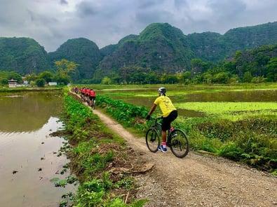 Truants 2020 Vietnam image